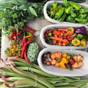 Fructe & legume