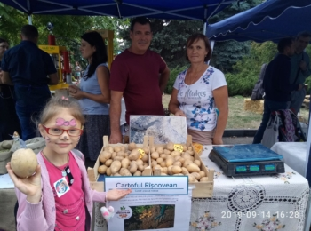 Bugneac Aurelia / Cartoful Rîșcovean