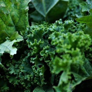 Salate & verdeață